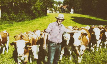 Bayern: Mehr ökologische Lebensmittel aus heimischer Produktion